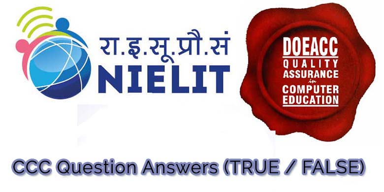ccc solved previous year question answers true false